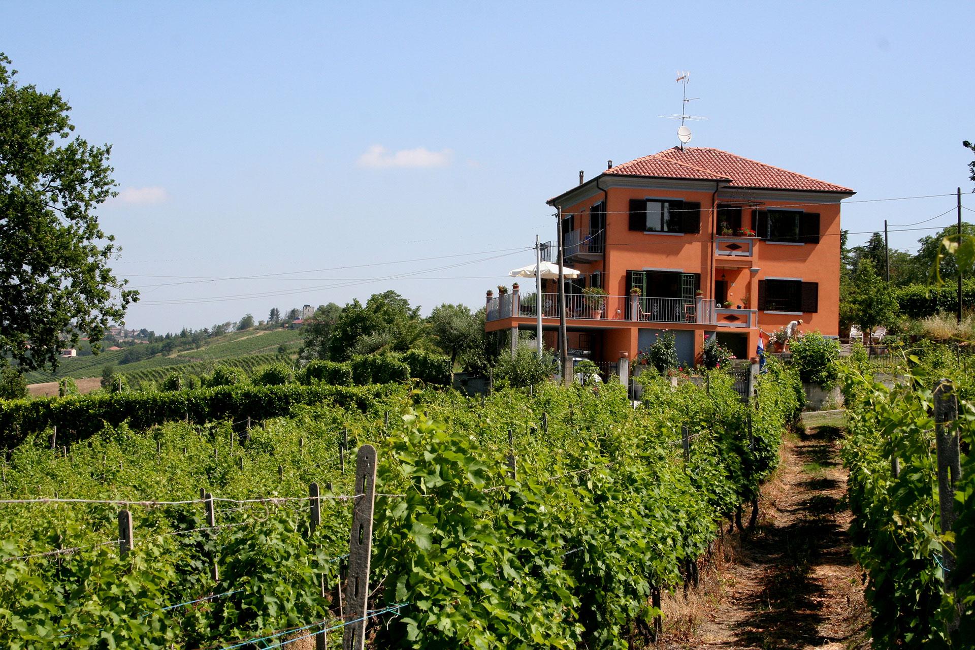Villa gezien vanuit wijngaard